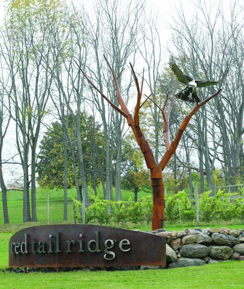 Image result for red tail ridge winery