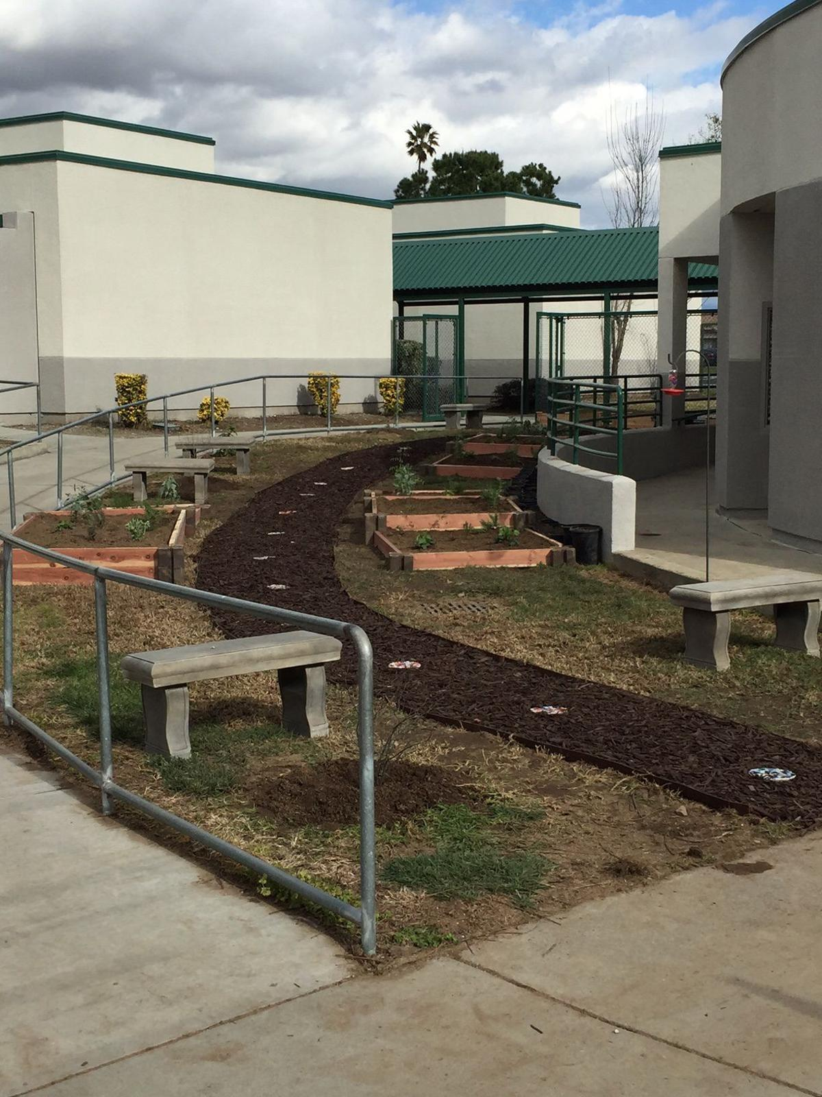 Mango Elementary School gets new reading garden thanks to grant ...