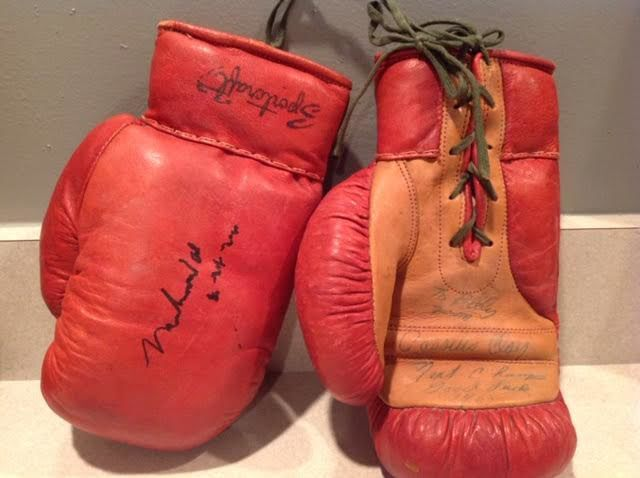 Boxing Gloves Photo 2