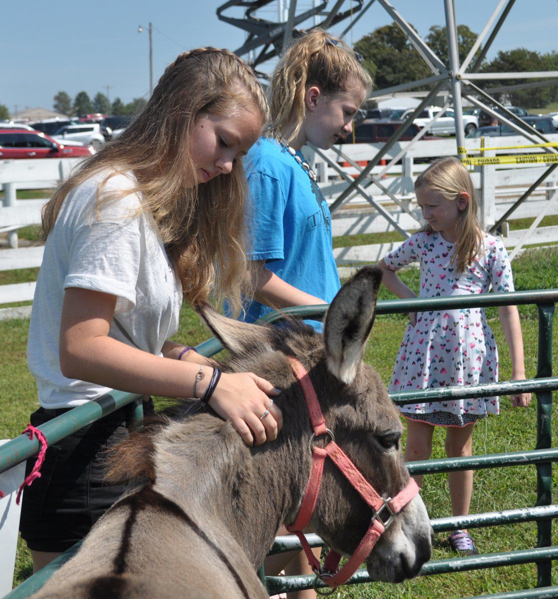 Kentucky Downs hosts Family Fun Day at track