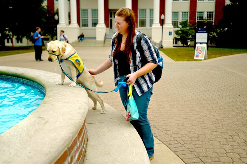 Service dogs get a college education at Mary Washington | News ...