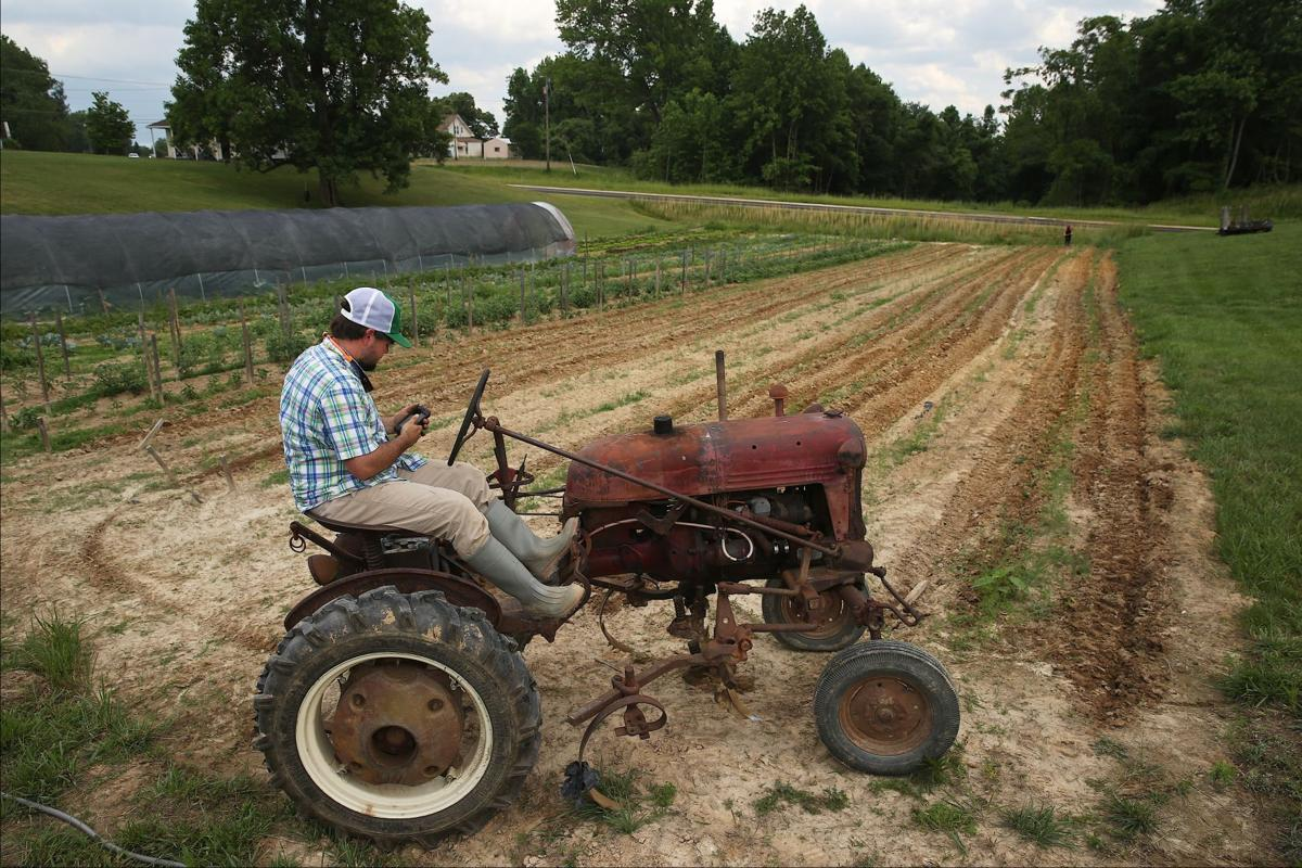ON THE FARM: Food goes farm-to-table | Agriculture | fredericksburg.com