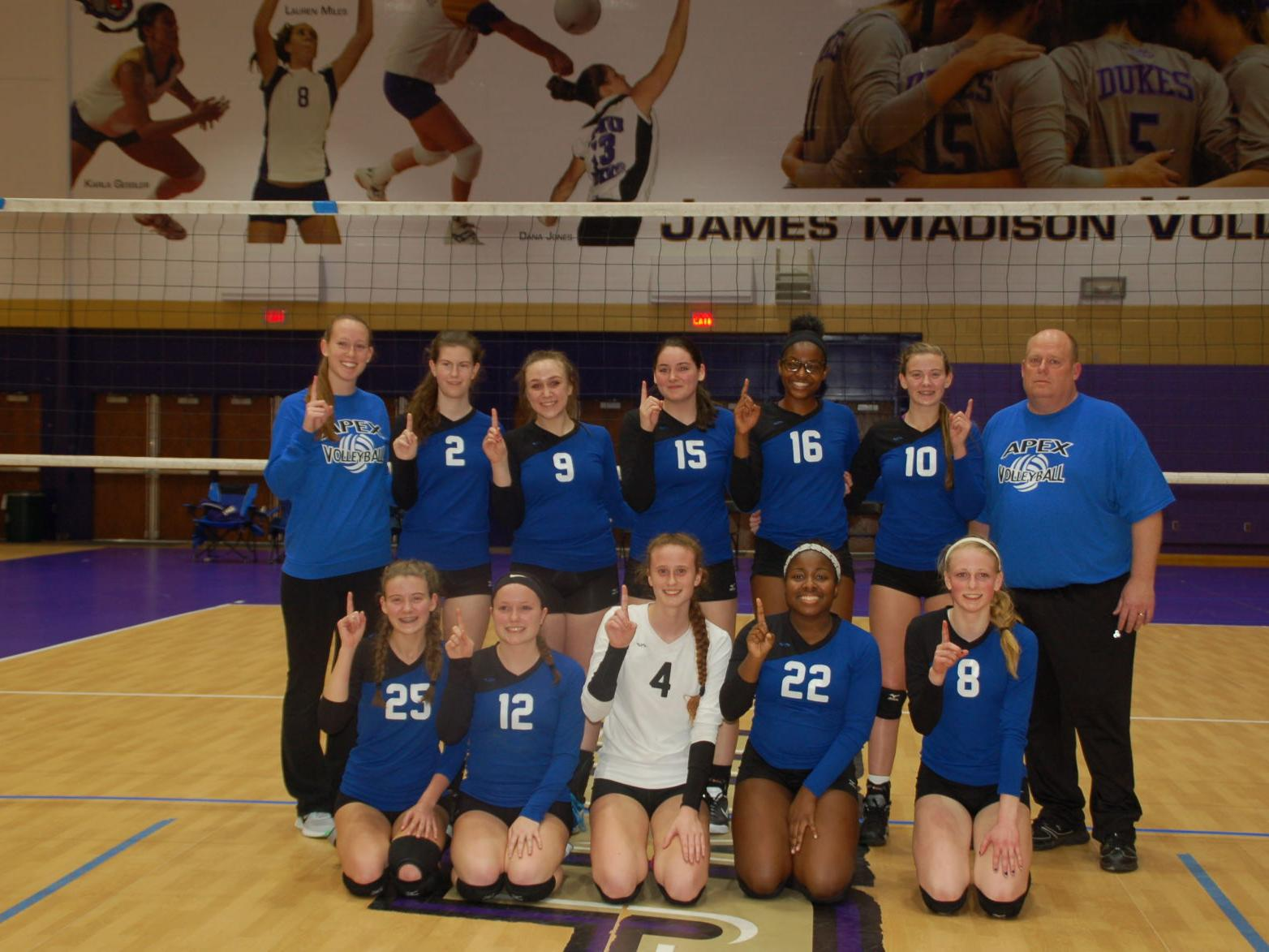 Apex Volleyball Club Wins Tournament At James Madison University Sports News Fredericksburg Com