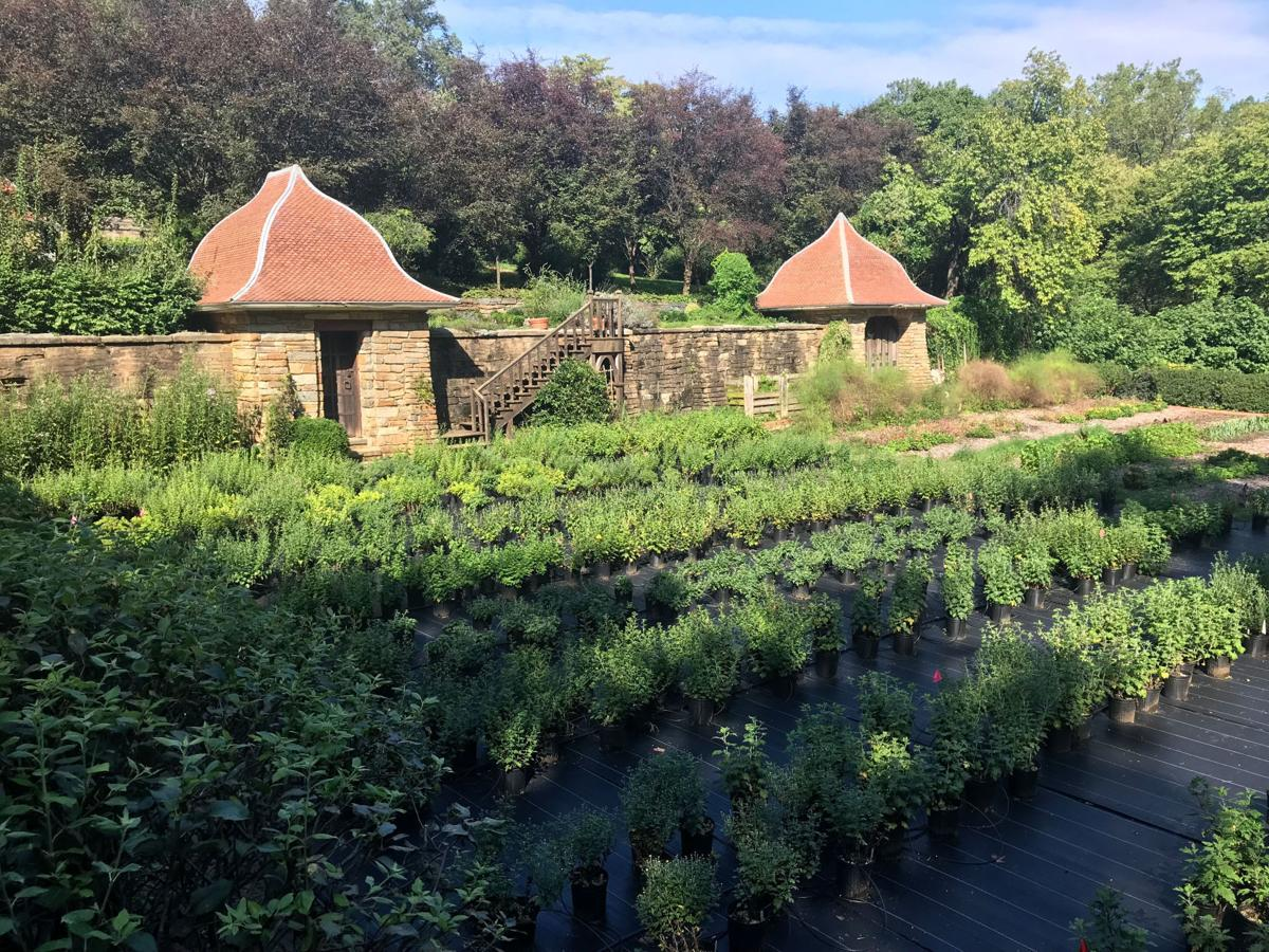 Bask in the beauty of fall at capital gardens   Weekender ... Contemporary Garden Design Fl E A Html on