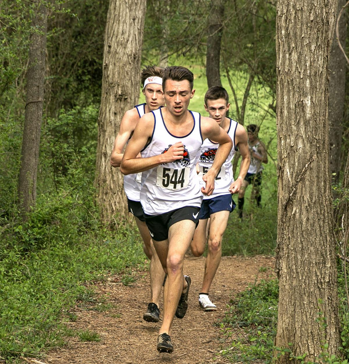 Commonwealth cross country