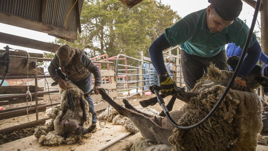 FLS again wins Farm Bureau's top journalism award   News