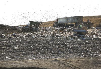 King George landfill