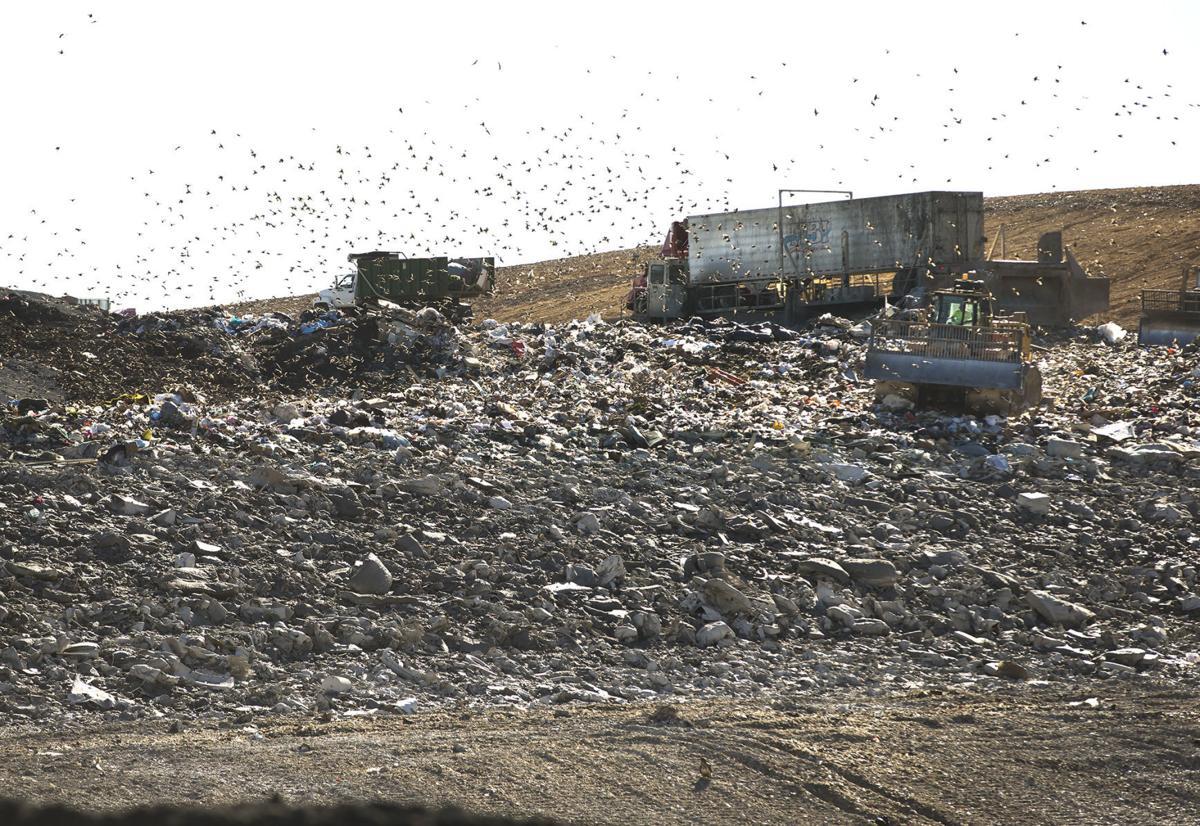 King George landfill1