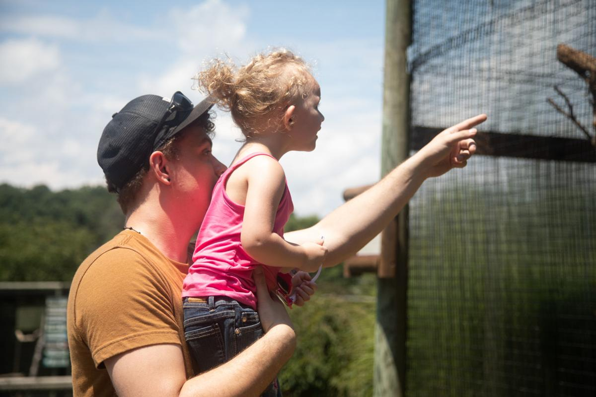 Virginia Safari Park puts visitors in touch with nature | State