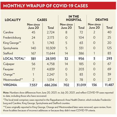 Fredericksburg-area COVID-19 cases