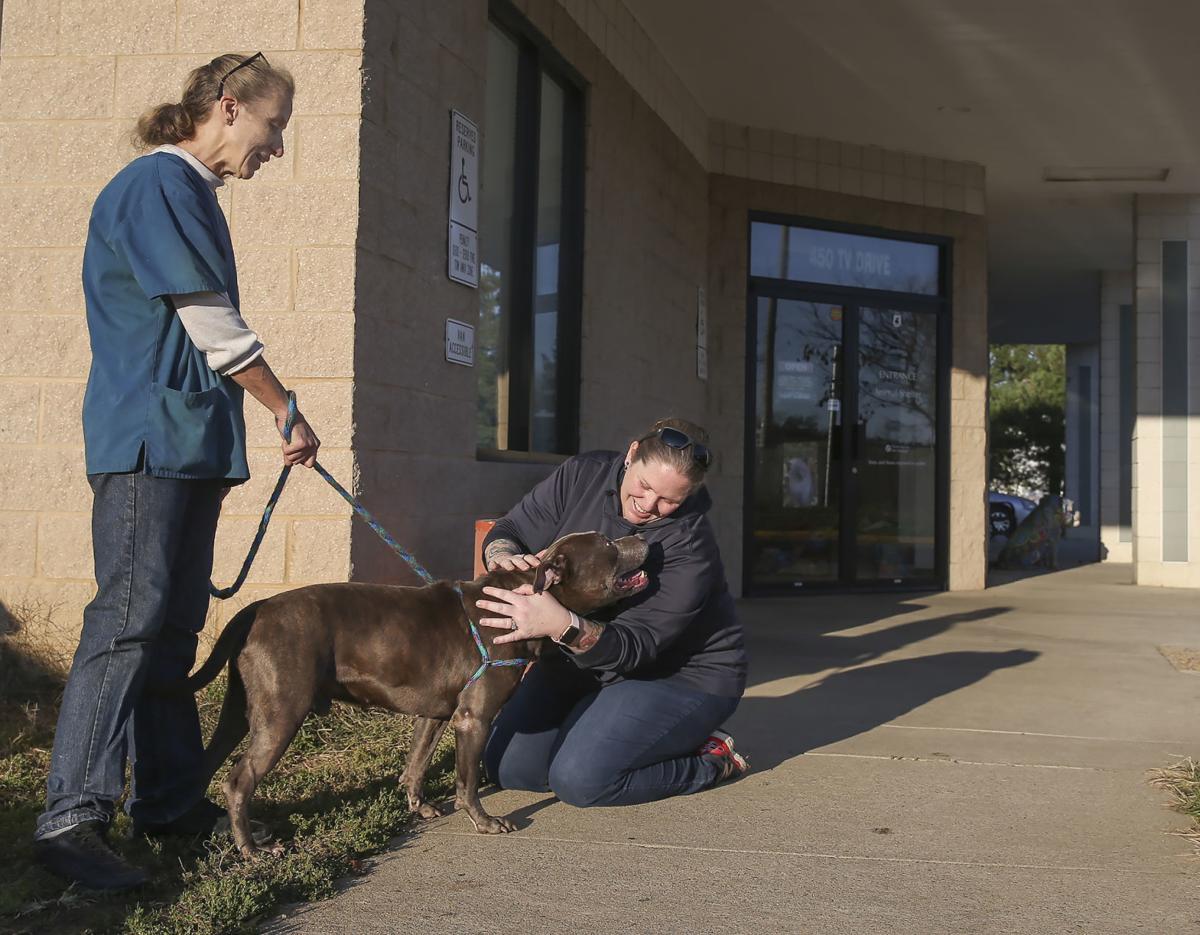 Spotsylvania County Animal Shelter
