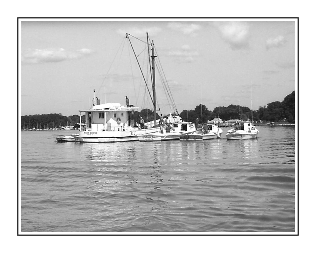 Essence of the Potomac