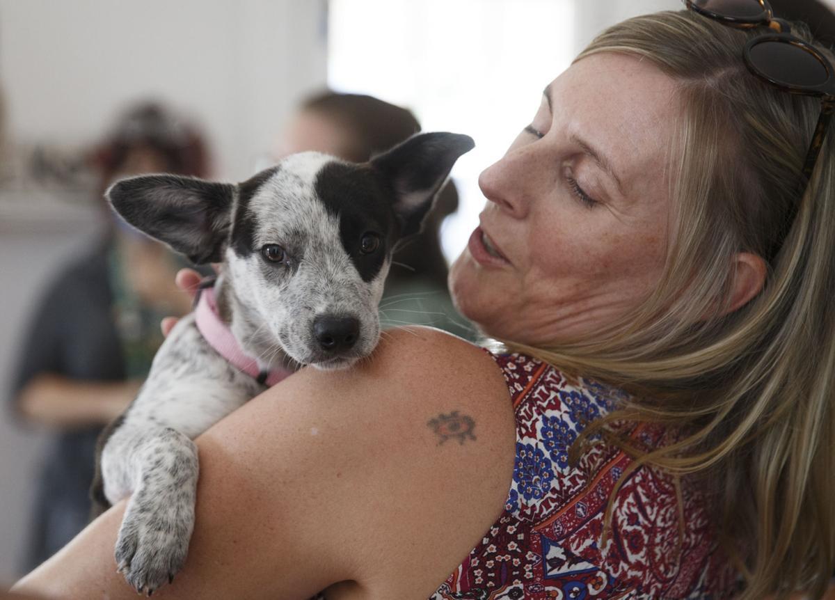 SPCA Building Donation