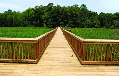 Public access to Crow's Nest preserve in Stafford moving forward