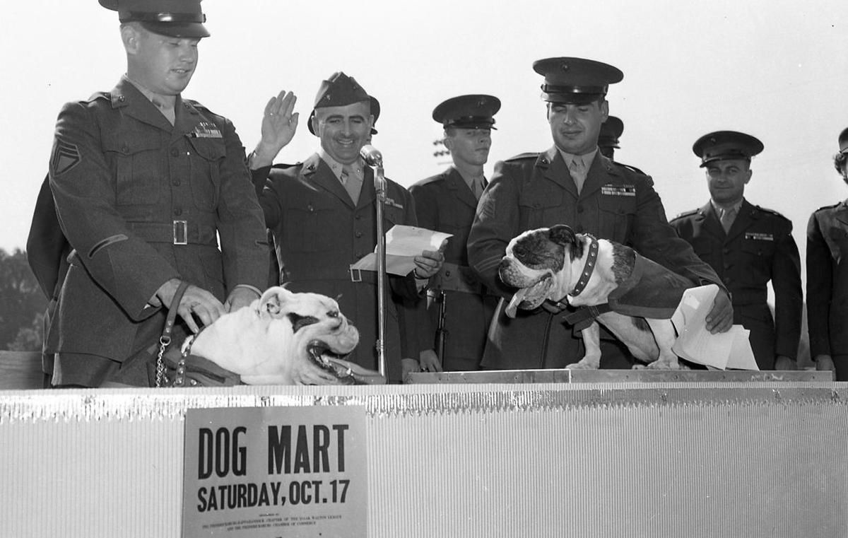 Dog Mart 1953