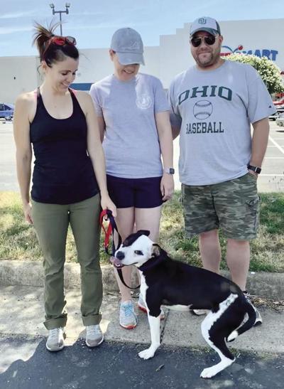 Orange couple creates Ziggy Dog Fund, aims to reduce number of