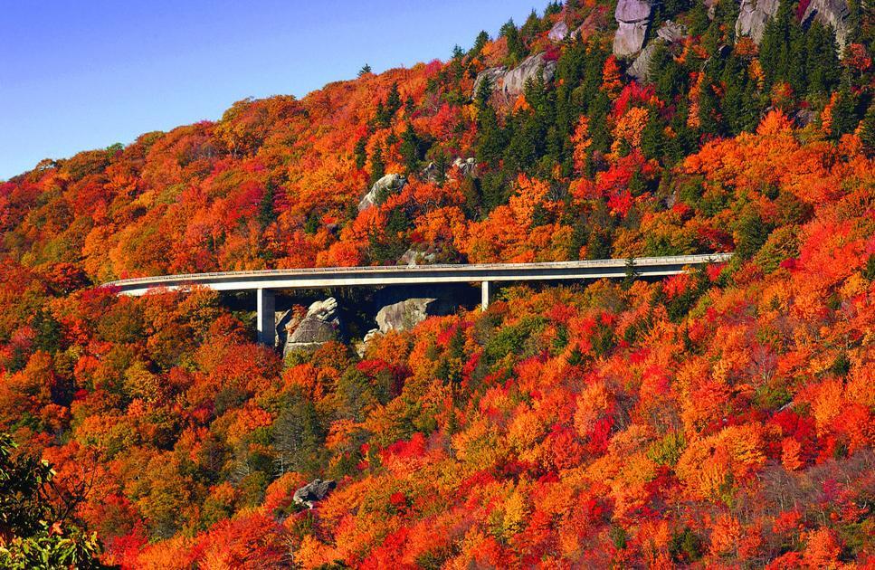 Fall Foliage In Washington Dc Maryland And Virginia