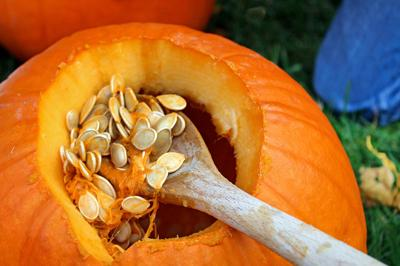 Don't throw them out: How to make simple, sweet and salty pumpkin seeds