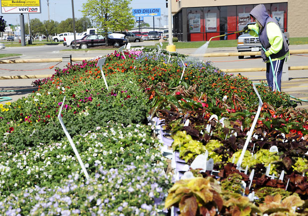 Temporary gardening centers spring up around Fremont | Local News ...
