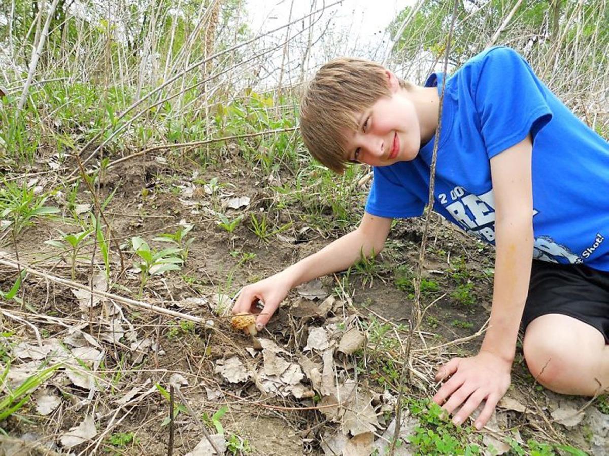 Mushroom photo with boy