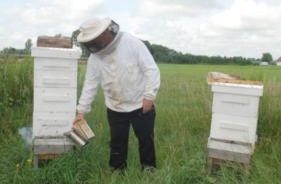 Beekeeper with smoke