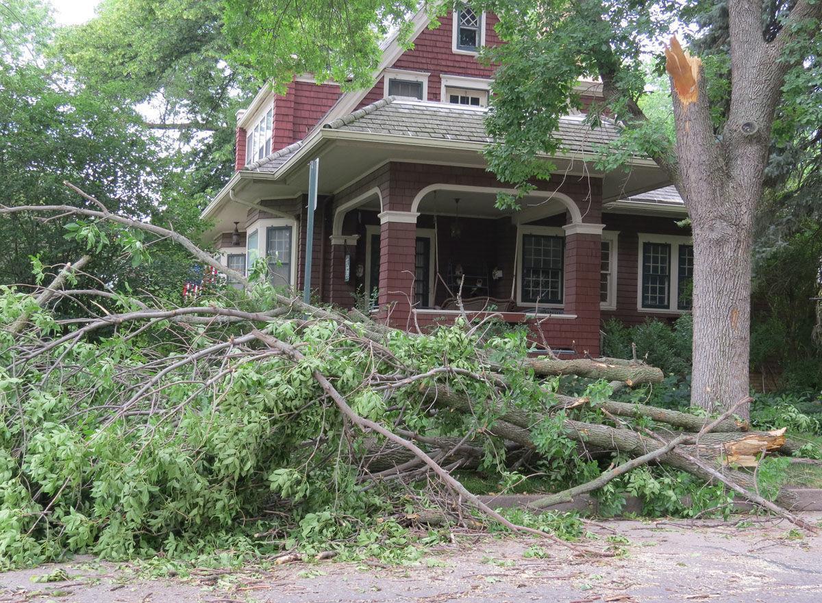 Fremont storm damage