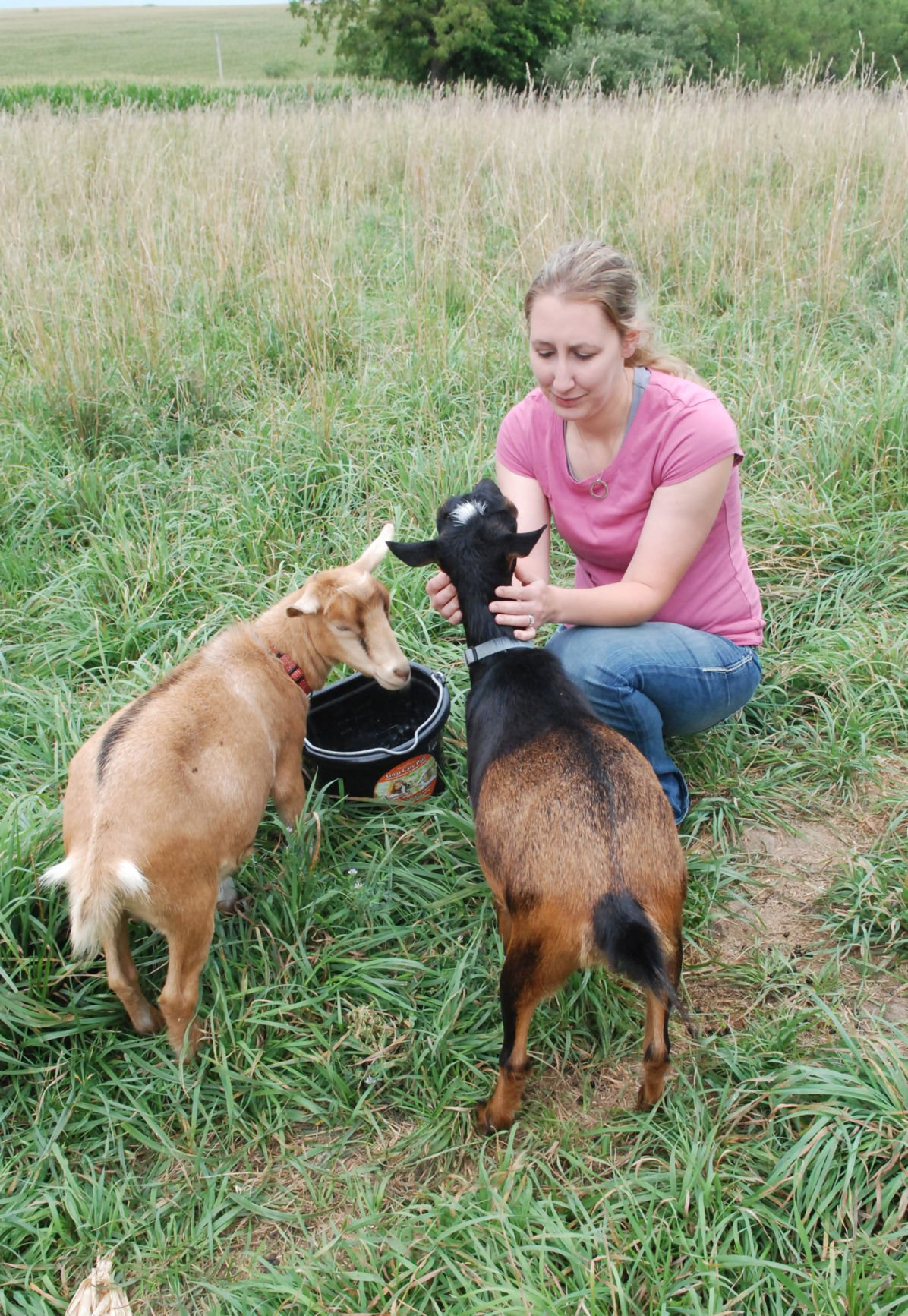 Angie Meyer and goats
