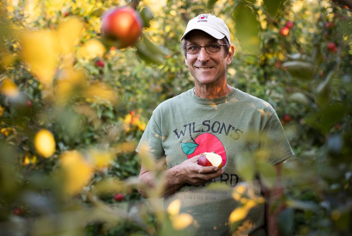 Wilson's Orchard - Paul Rasch
