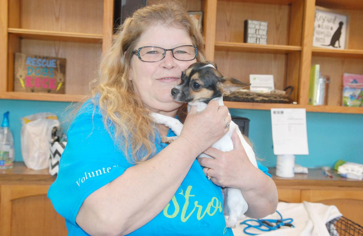 Donation helps local pet rescue organization | Local News