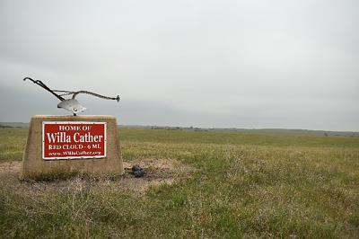 Untouched grassland adjacent to Willa Cather Memorial Prairie