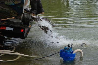 Annual trout stocking set for Thursday   Local News   fremonttribune com