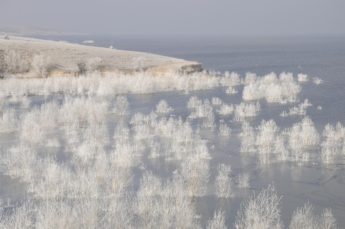 Hoarfrost at Lake McConaughy