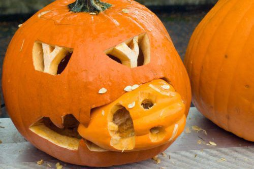 5 Ways To Stop Your Pumpkin From Rotting Before Halloween