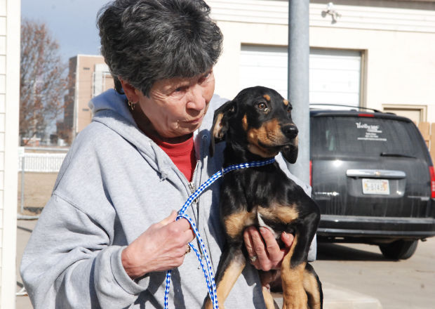 Humane Society Rescues Dogs From Other Shelters Pets Fremonttribune Com