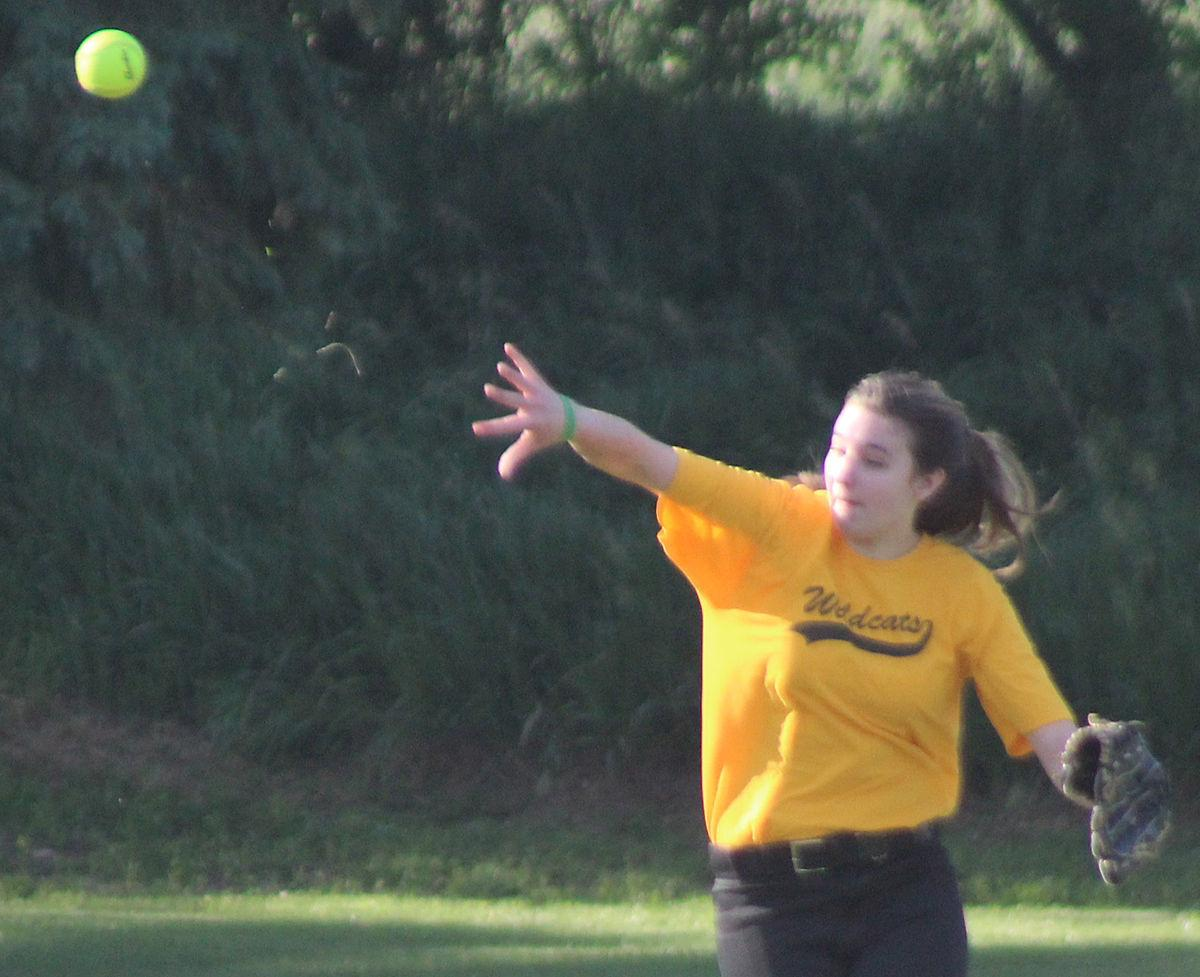 Making throw from left field in third inning