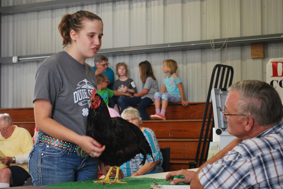 Dodge County Fair