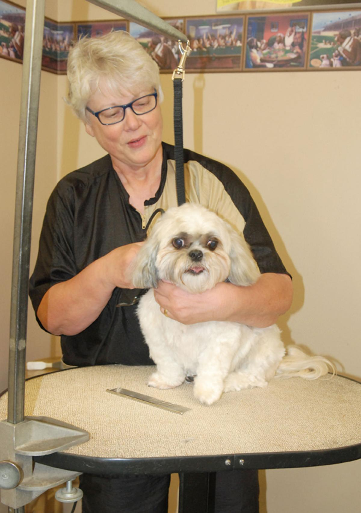 Dogs-R-Us Grooming to close doors in July | Pets