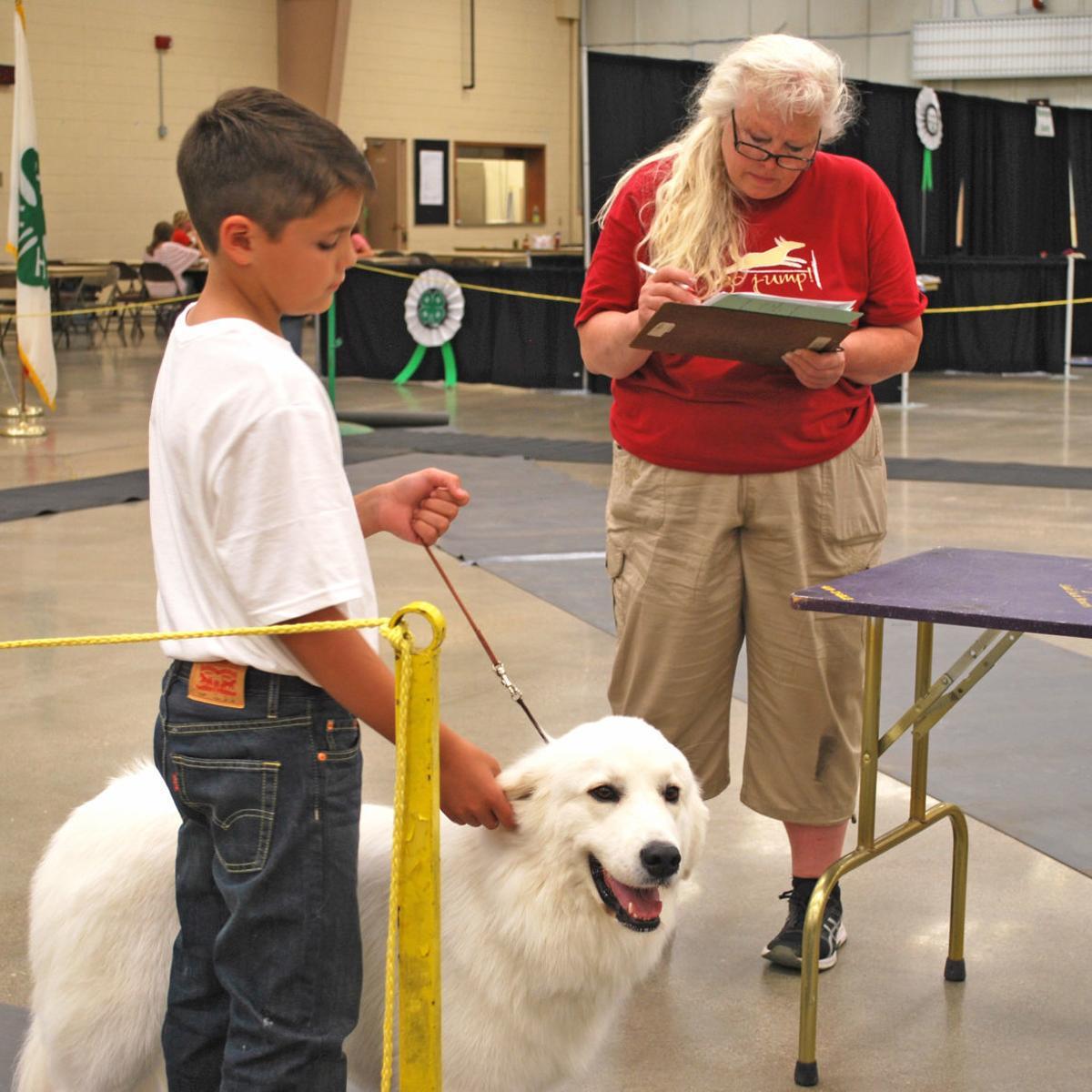 A boy and his dog | Local News | fremonttribune com