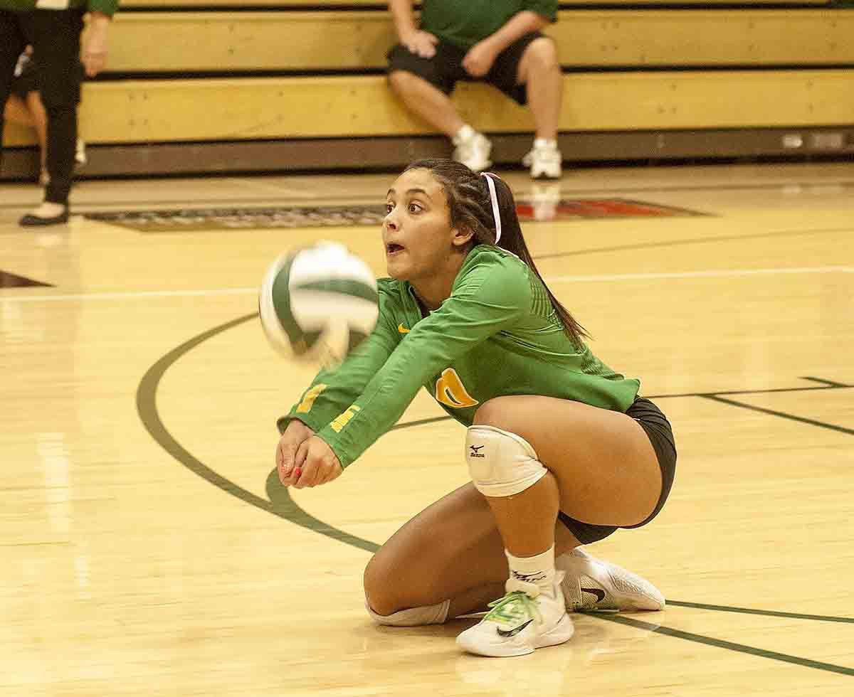 Photos: Bergan volleyball vs. David City Aquinas, 10.5.17