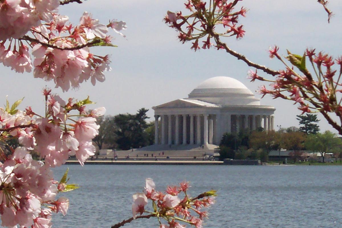 Washington D C  photo.JPG