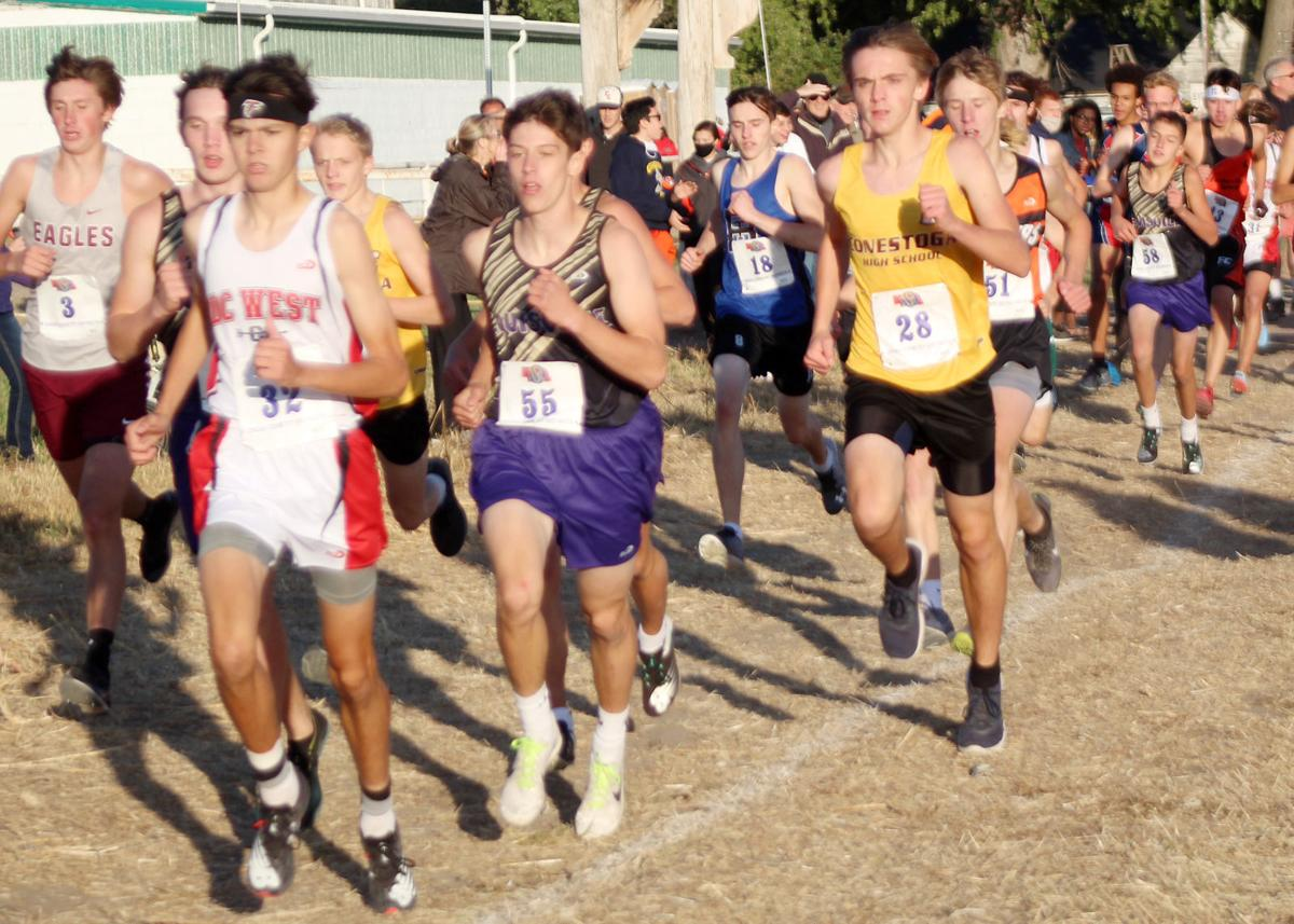 Photos of runners at district meet