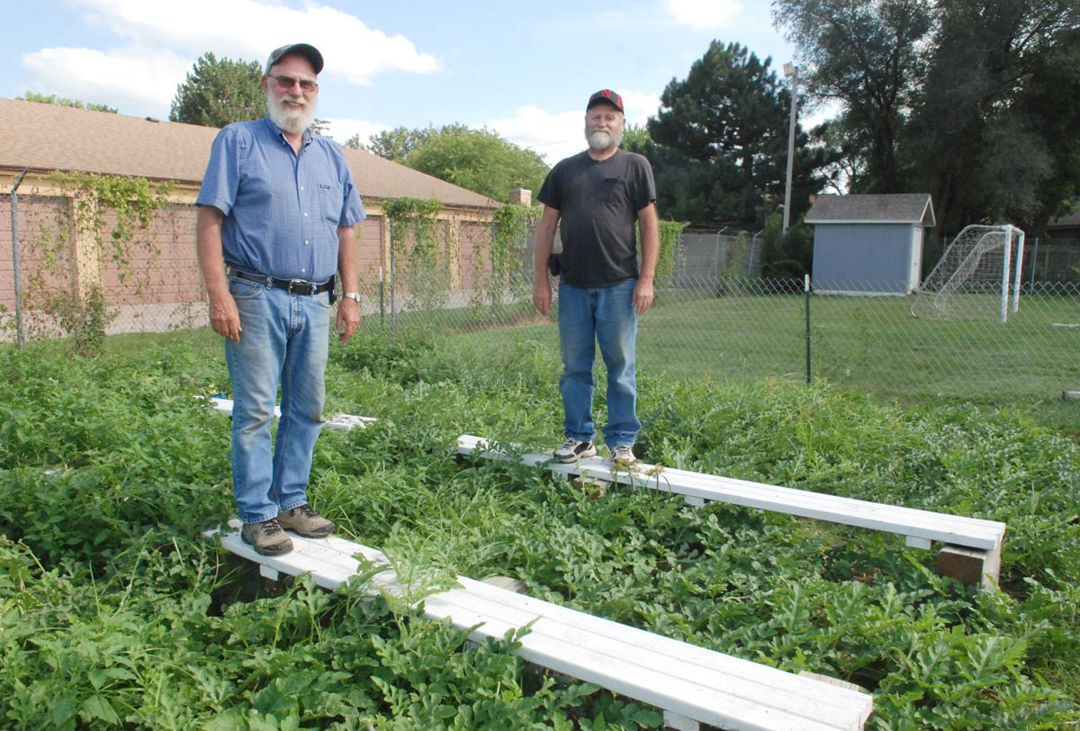 Brothers standing on raised walkways to homemade irrigation system