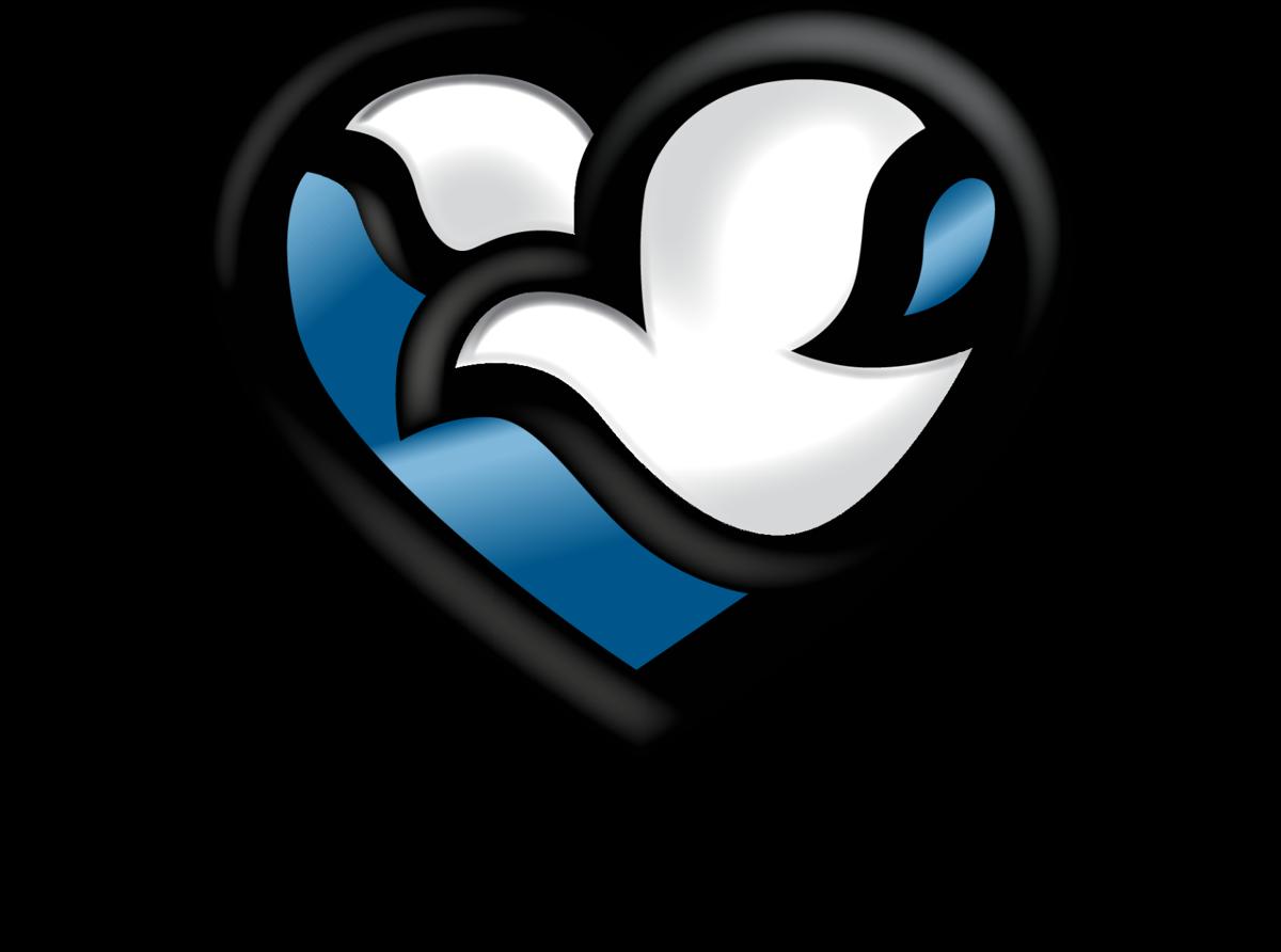 Methodist Health System logo