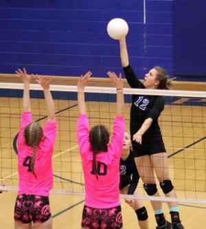 Prep volleyball: Moose stun Stars