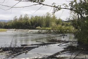 15 residents with homes endangered by Matanuska get buyouts