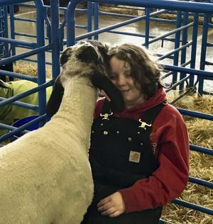 The hardest part: When the fair ends, it's a tough goodbye for 4H kids