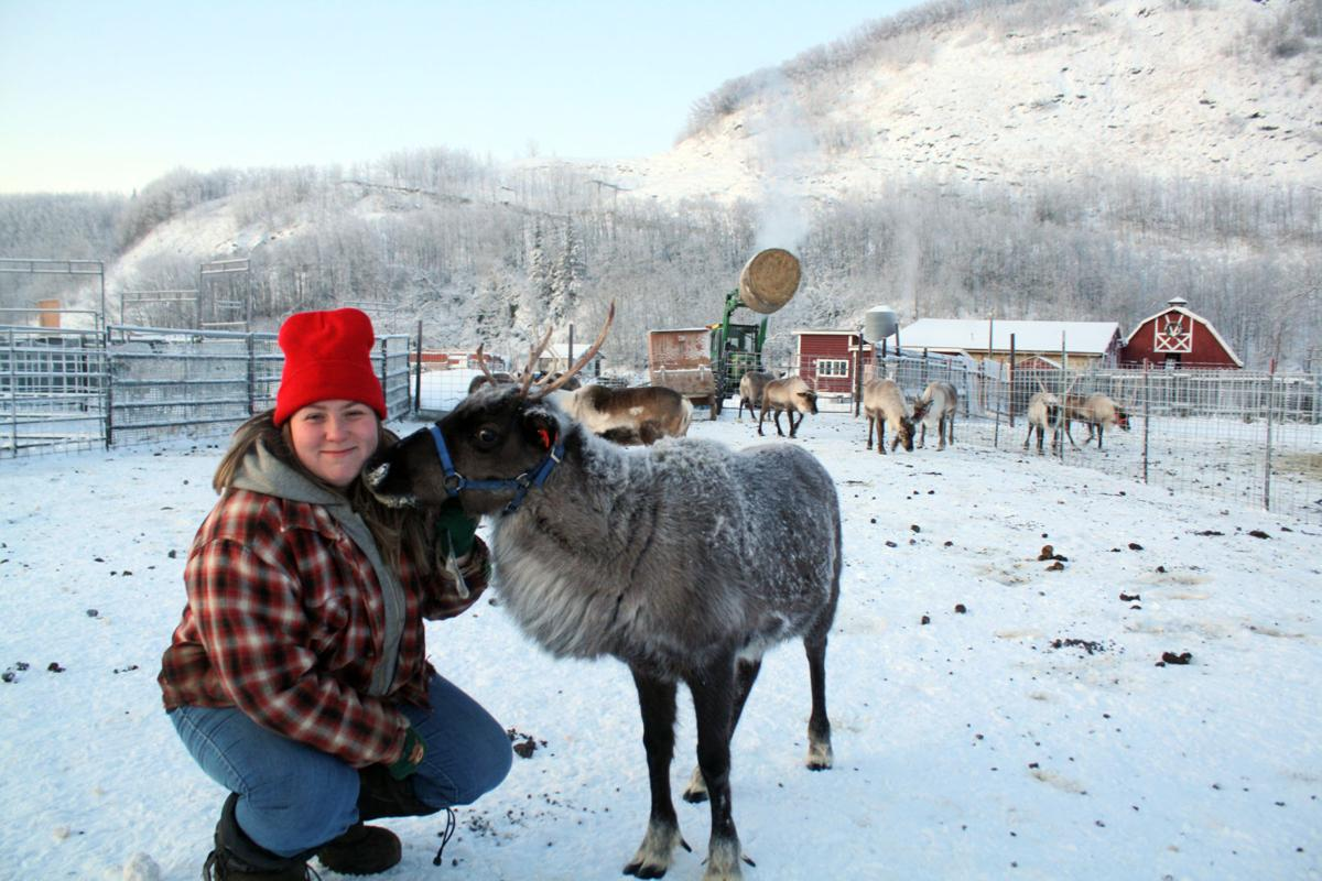 Williams Reindeer Farm