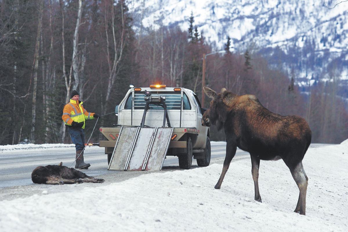 Alaska Moose Federation