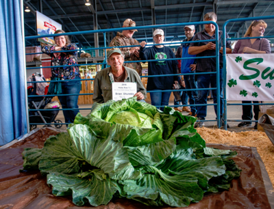 Brian  Shunskis  poses  with  his  giant  cabbage  which  he  named  DzSuccess,dz  after  the  cabbage  weighing  contest  at  the  Alaska  State  Fair  on  Friday  night.