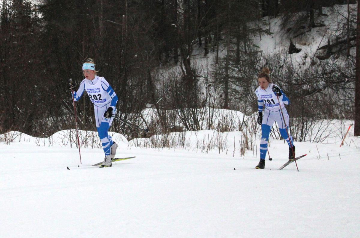 Palmer cross-country skiing